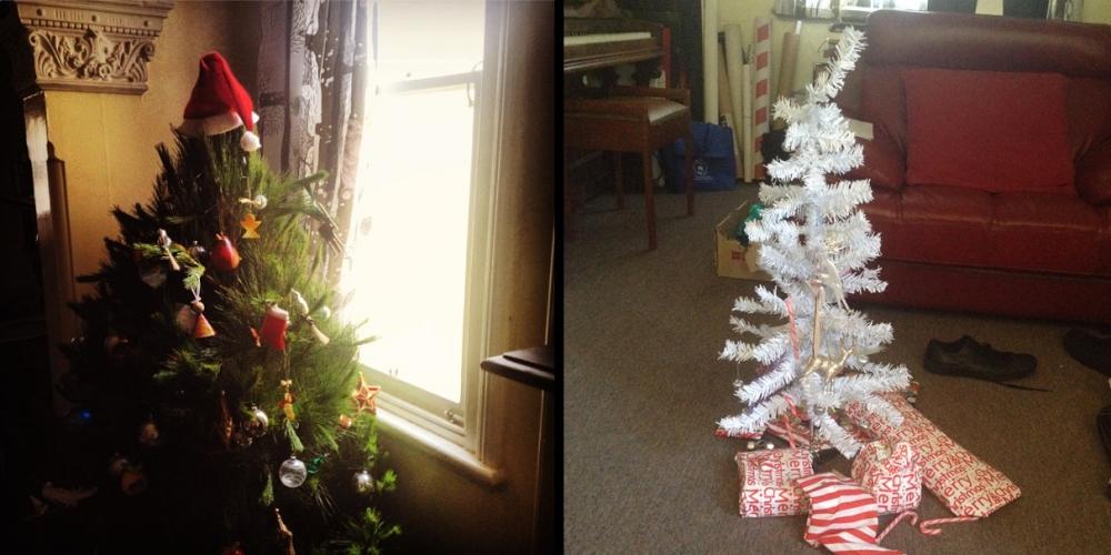 Christmas_Tree_Comparison